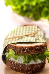 delicious fresh sandwich