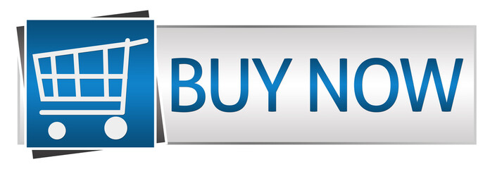 Buy Now Blue Grey Button