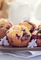 Homemade black berry muffins  for mother's day breakfast
