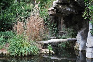 The water pond in LA Zoo, California