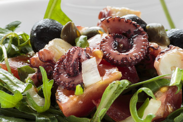 Octopus salad with rucola and olives on white plate