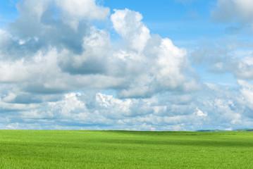 Prato verde e cielo nuvoloso