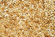 Sesame seed - 80010179