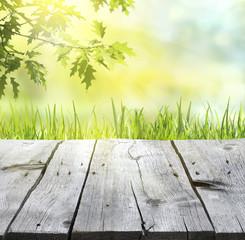 Holzbretter vor Frühlingshintergrund