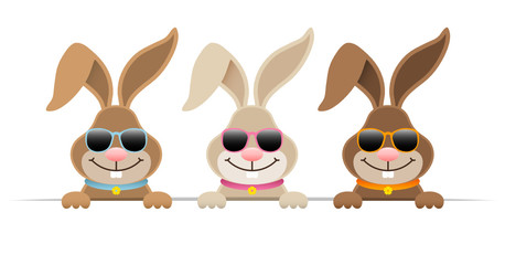 3 Easter Bunnies Sunglasses Banner