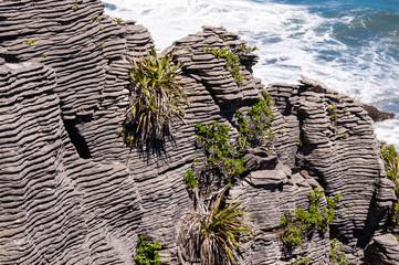 Amazing shapes of Pancake rocks