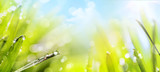 Fototapety abstract art spring Nature background