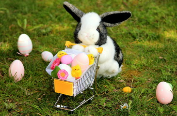 Easter rabbit shopping