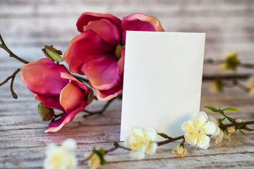 Pink magnolia and spring blossom with a blank card