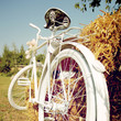 obraz - Summer Bicycle