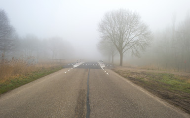 Road through a foggy landscape in winter