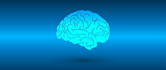 cervello, mente, testa, pensieri
