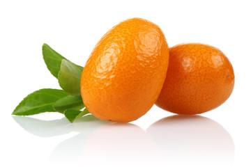 Two Kumquat and leaf