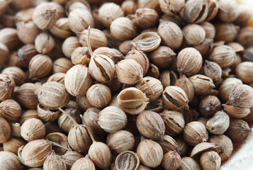 Coriander seeds close-up