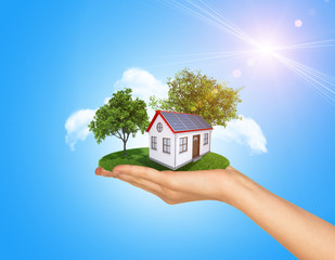Hand holding house on green grass with tree, solar panels