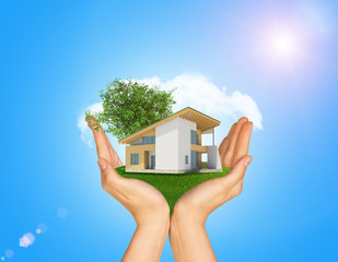 Hands holding cottage on green grass. Background of tree with