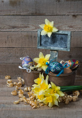 Easter decorative eggs in a pot and flowers of narcissus