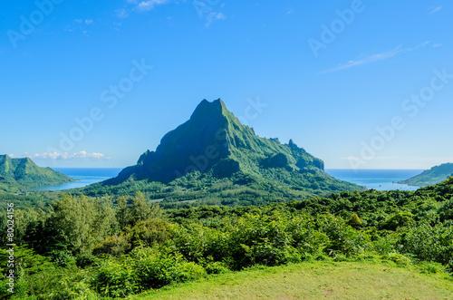 Leinwanddruck Bild Green tropical Moorea