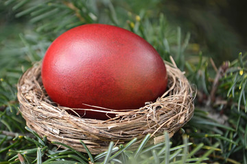 Red Easter egg in a nest on the tree