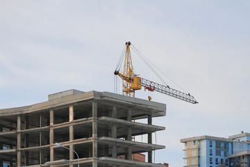 Frame and monolithic house and tower crane