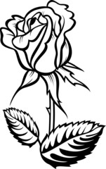 Rose with leaves. Vector tattoo silhouette