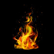 Realistic fire on a black background vector - 80030784