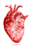 Fototapety abstract low poly human heart, vector