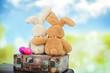 Osterhasen mit Eier - 80033726