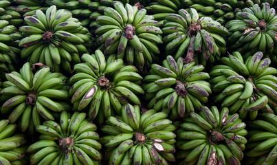 Bunches of bananas. Uganda. © gudkovandrey
