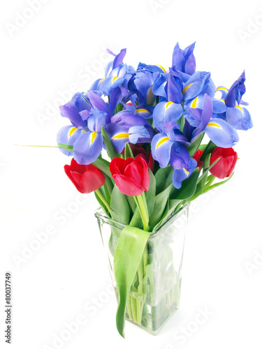 Keuken foto achterwand Iris flower bouquet purple and red