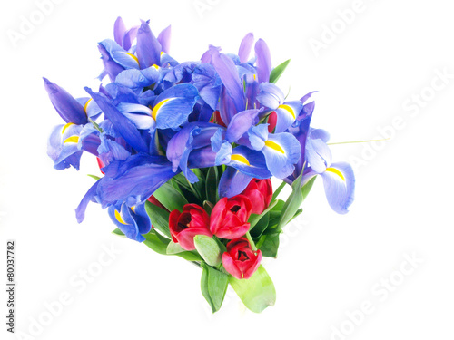 Fotobehang Iris flower bouquet purple and red