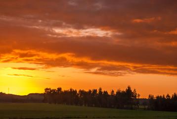 Campagna sarda al tramonto