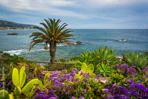 Garden and view of the Pacific Ocean at Heisler Park, in Laguna
