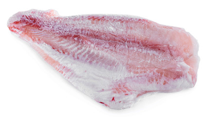 Pangasius fillet isolated on white