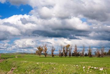 Sardegna, campagna della Trexenta