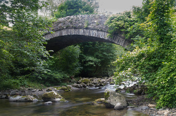 Stony stream in woodland with bridge