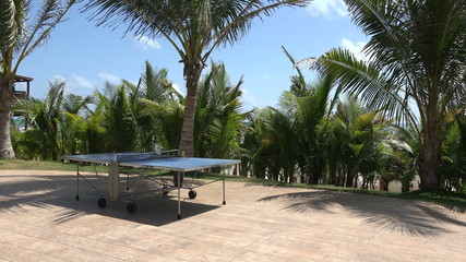 Tropical Ping Pong Table Pan