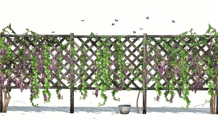 fence with vine tendrils and butterflies