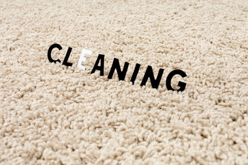 the image of the cleaning carpet