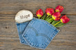 red tulips in denim pocket with rock - 80054362