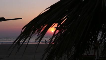 sunset through waving palm leaves at beach