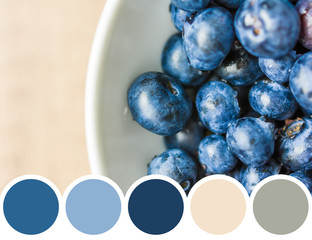 Color Palette Of Fresh Blueberries In White Bowl