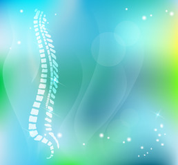 Vertebral column on a beautiful light blue background