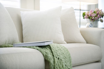 Living room sofa with pillows coffee and book