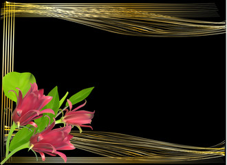 red flowers in gold frame isolated on black