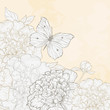 Illustration with peony and butterfly