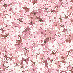 Seamless background with pink lilac flowers. Vector illustration