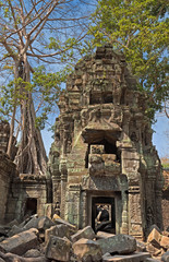 khmer tower in the jungle