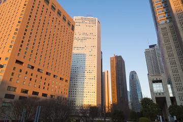 夕日を浴びる新宿高層ビル街と東京の街並(横浜みなとみらいまでを望む)
