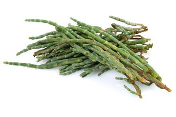 Heap of Salicornia